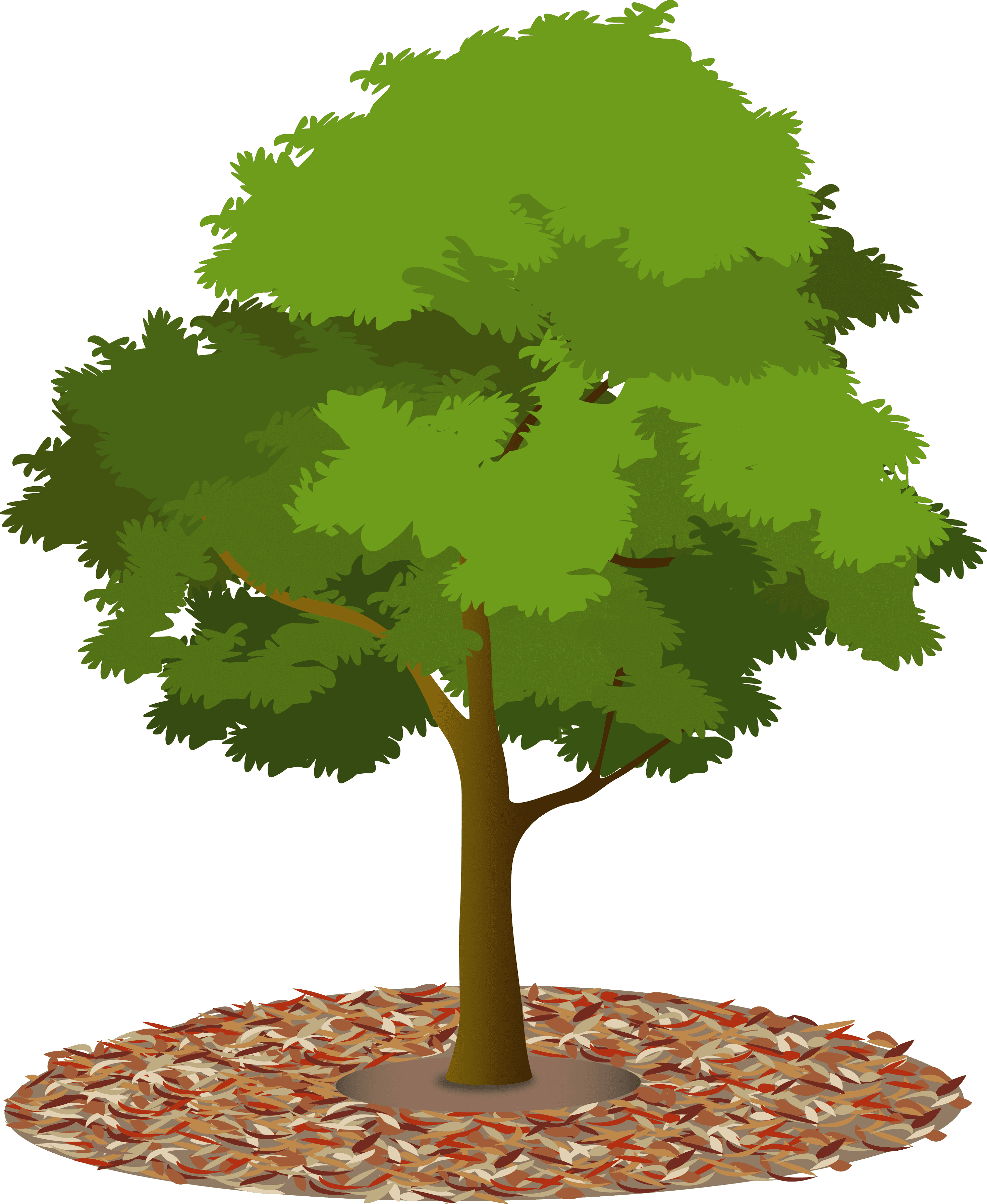 mulch-tree